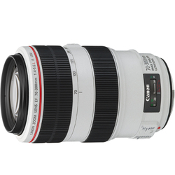 �y�V�i�z(�L���m��) Canon EF70-300mm F4-5.6L IS USM �Y�[�������Y �]��