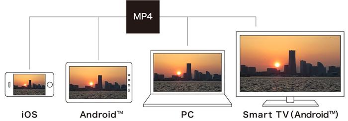 高圧縮記録「MP4フォーマット」