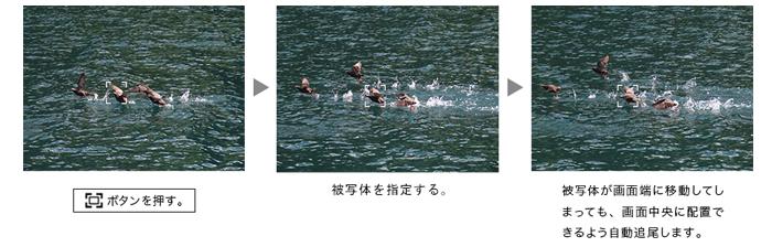 フレーミングアシスト(固定)